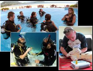 Kon-Tiki Diving IDC Instructor Course october 2012
