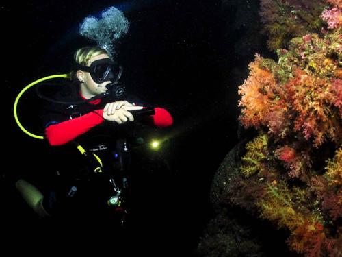 Divers night thailand kon-tiki krabi