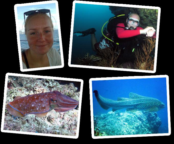 PADI advanced open water diver diving thaiand koh lanta