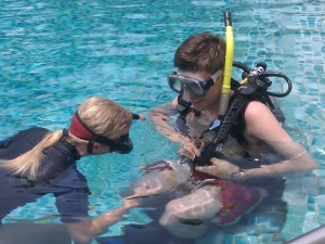 Pool divemaster training thailand
