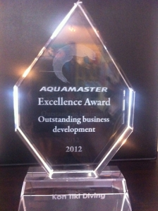 Kon-Tiki Thailand's Excellence Award for Outstanding Business Development