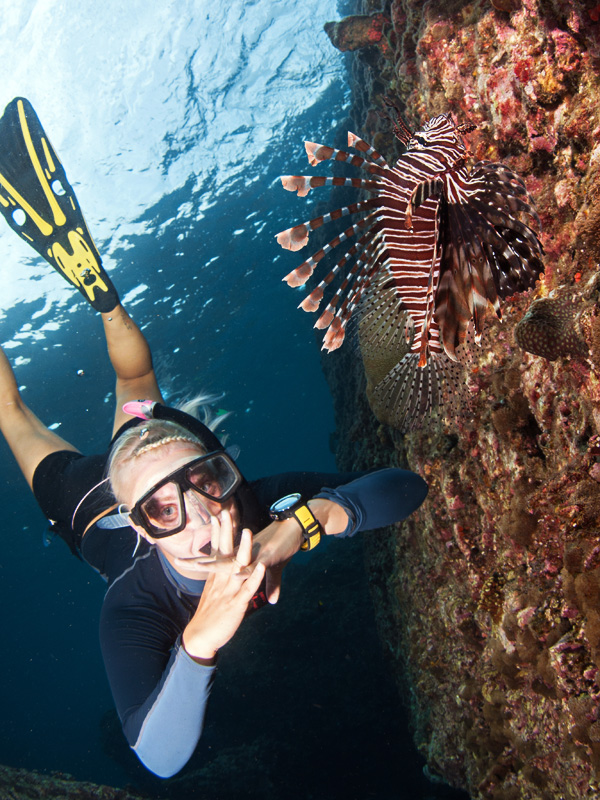 Snorkeling Koh Bida Lion fish Diving Thailand