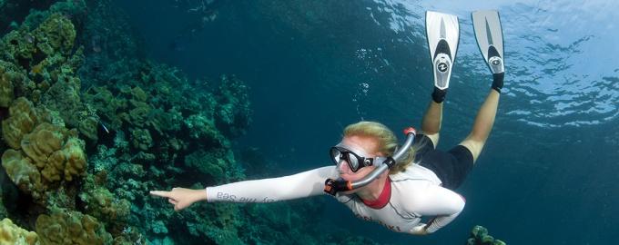 kon-tiki thailand snorkel guide